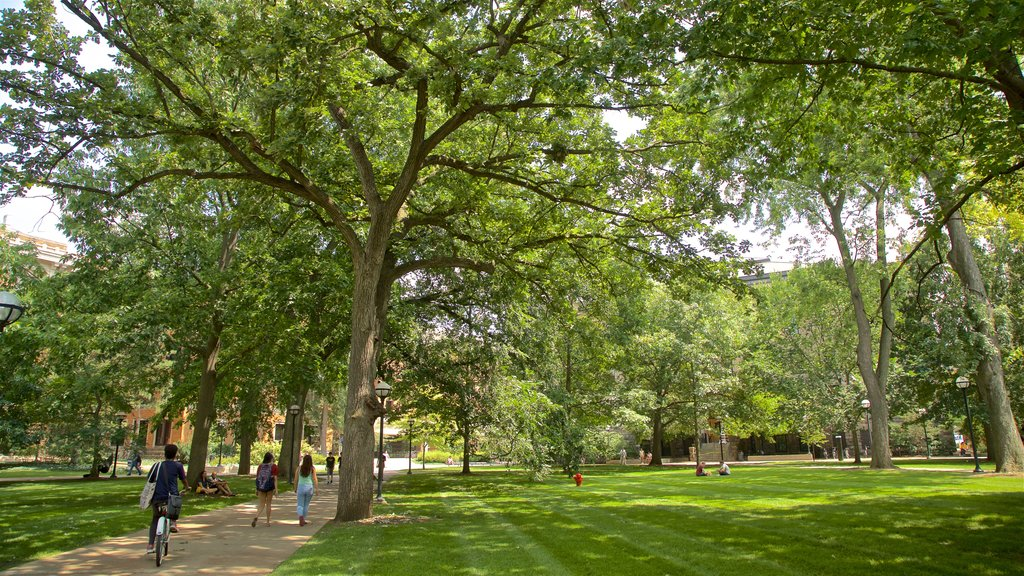 University of Michigan showing a park as well as a small group of people