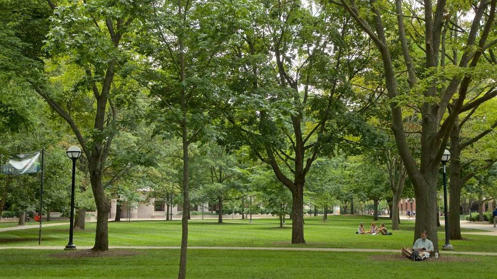 University of Michigan featuring a garden as well as an individual male