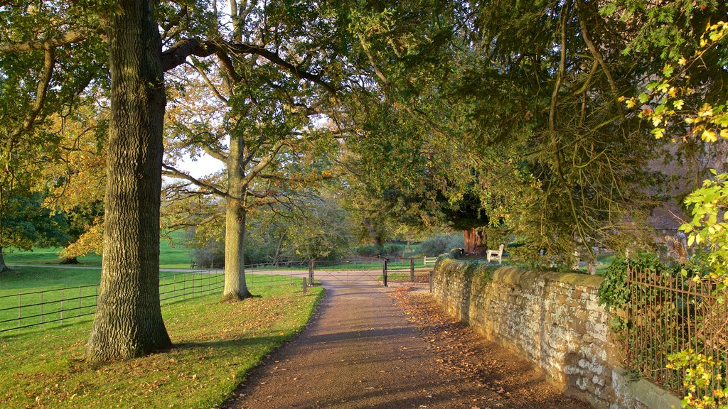 Broughton Castle showing a park and autumn leaves