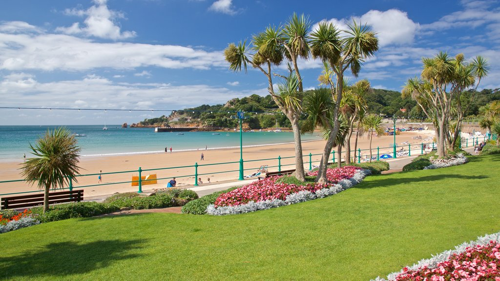 St Brelade\'s Bay Beach showing a beach, wildflowers and flowers