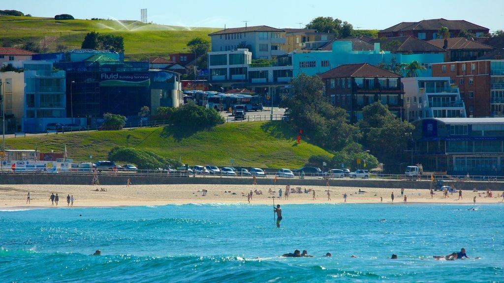 Bondi Beach featuring a sandy beach, surfing and a coastal town