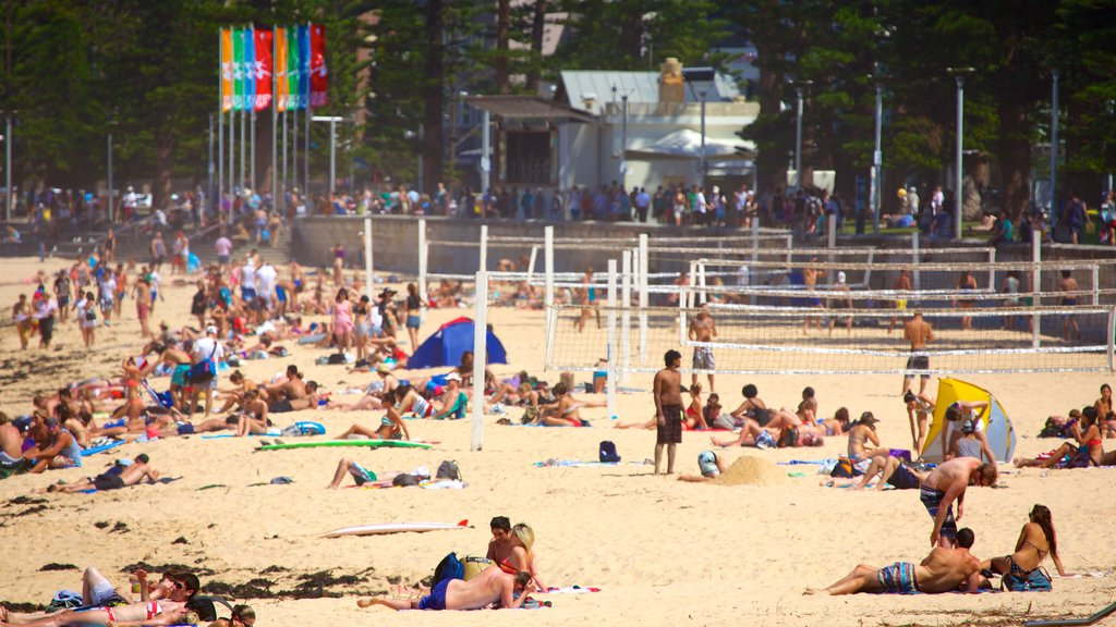 Manly Beach featuring a sandy beach as well as a large group of people