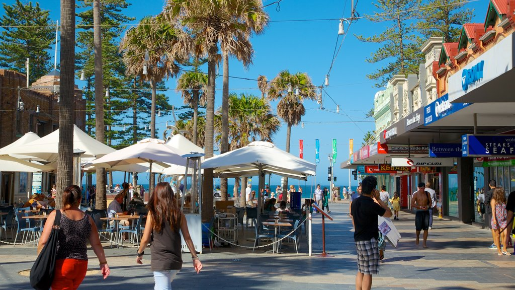 Manly Beach which includes tropical scenes, outdoor eating and street scenes