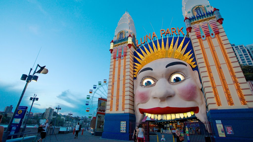 Luna Park showing rides and a city