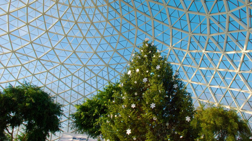 Mitchell Park Horticultural Conservatory which includes interior views
