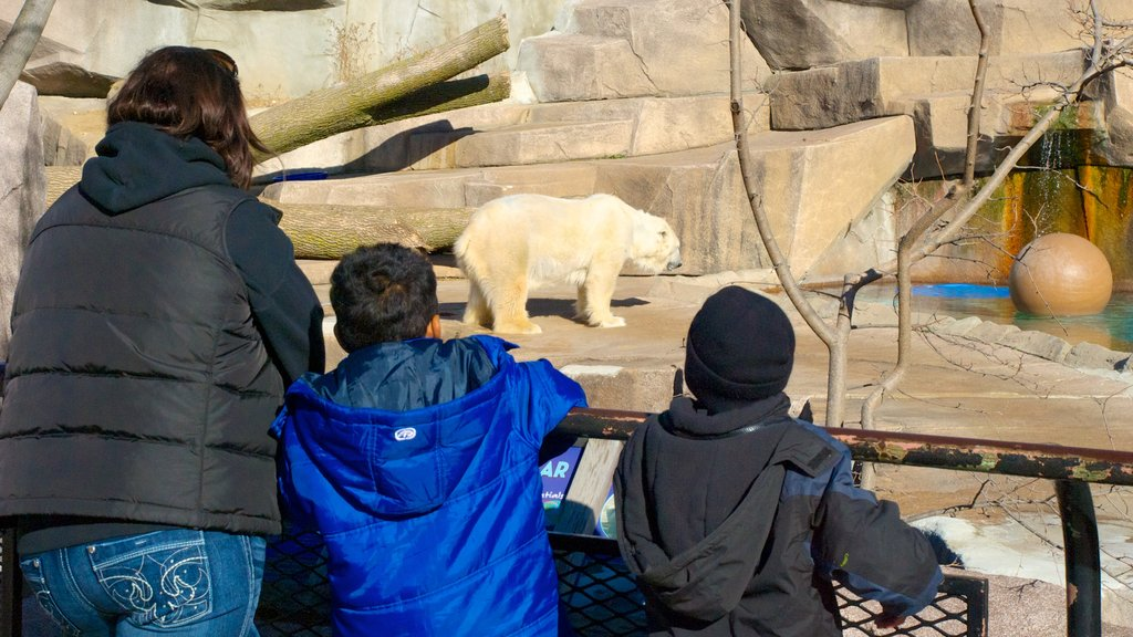 Milwaukee County Zoo which includes dangerous animals and zoo animals as well as a small group of people
