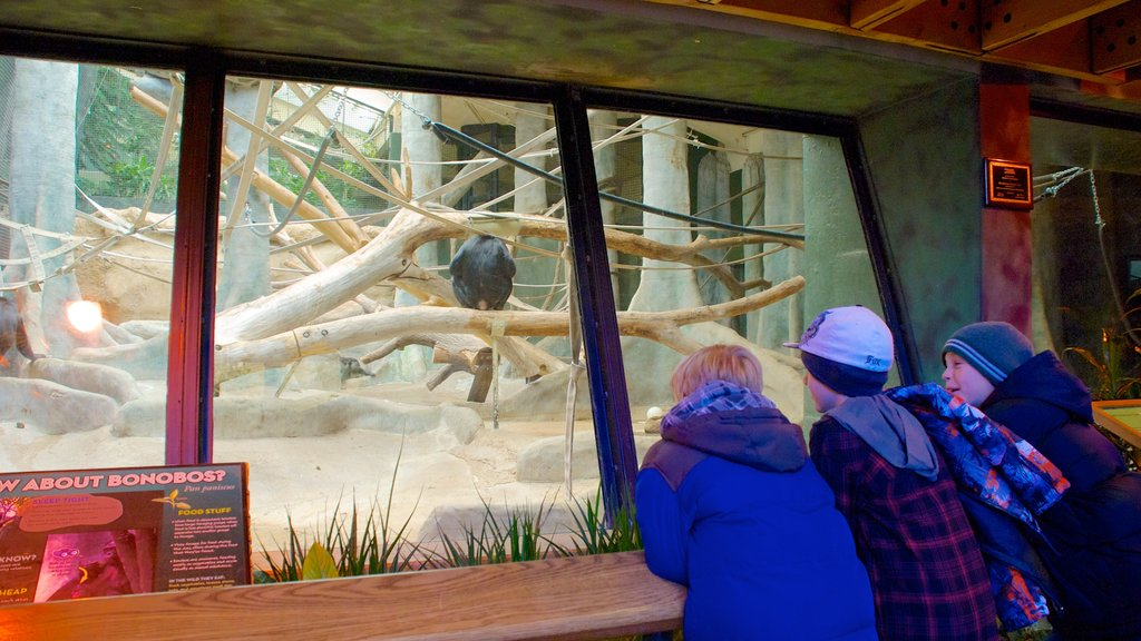 Milwaukee County Zoo featuring interior views and zoo animals as well as children