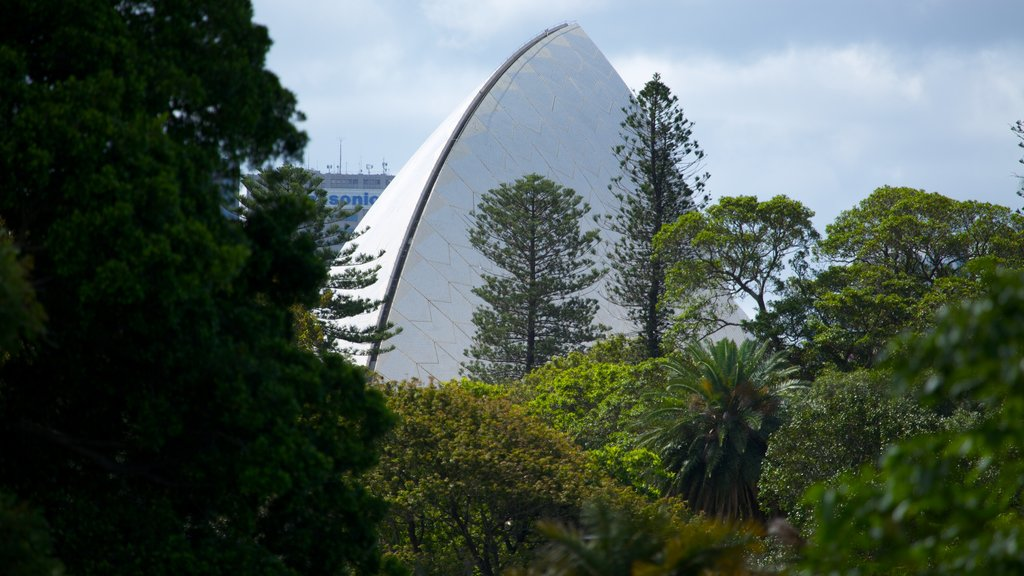 Royal Botanic Gardens which includes a garden and modern architecture