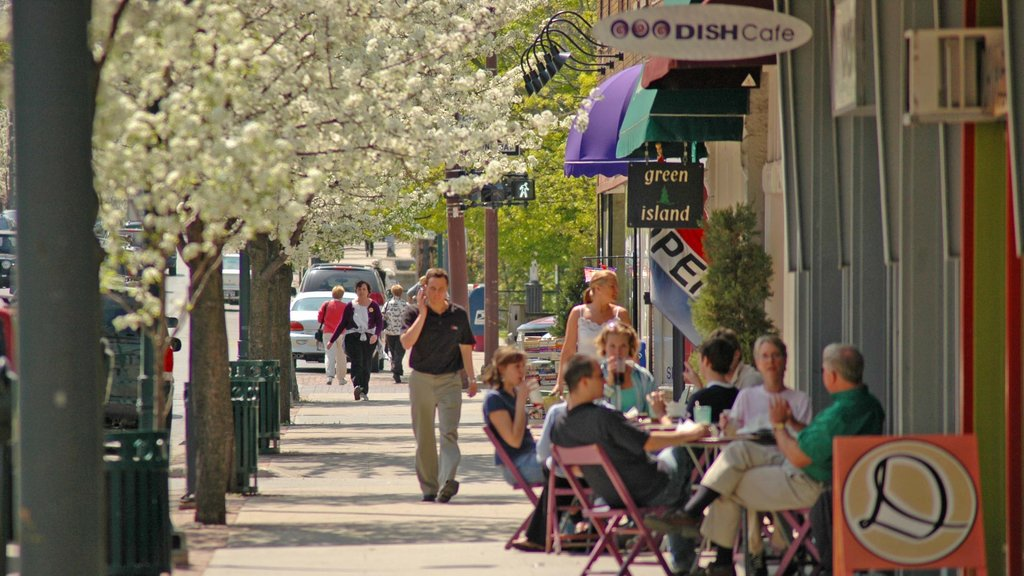 Traverse City featuring a city, outdoor eating and street scenes