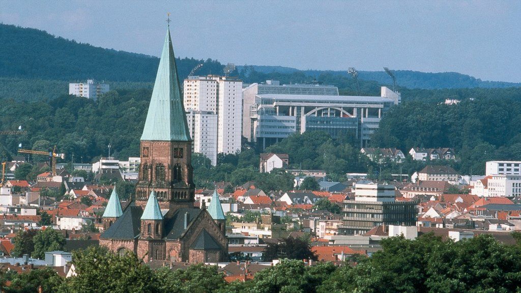 Kaiserslautern which includes a church or cathedral, heritage architecture and a city