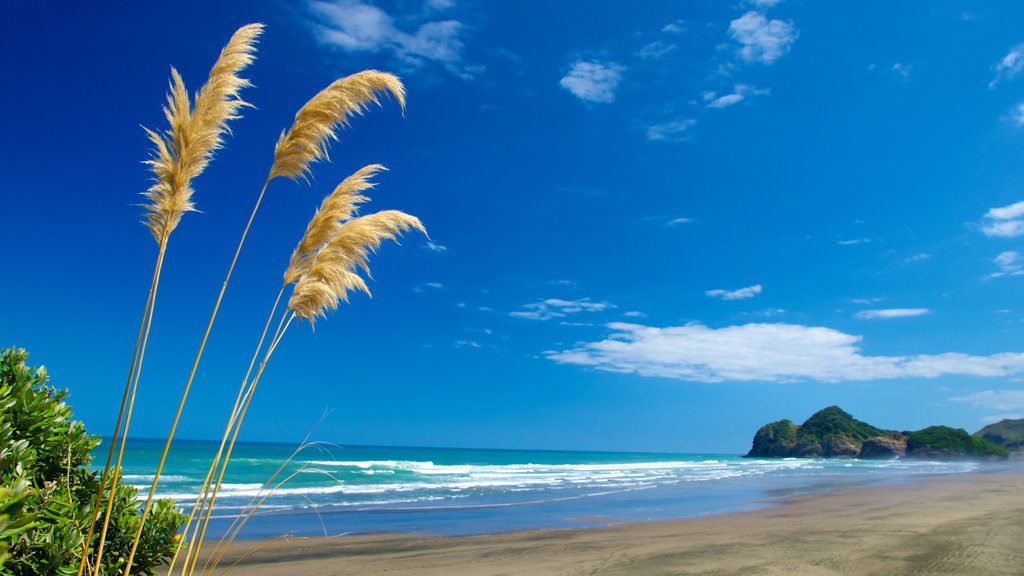 Bethells Beach which includes a sandy beach, landscape views and tropical scenes