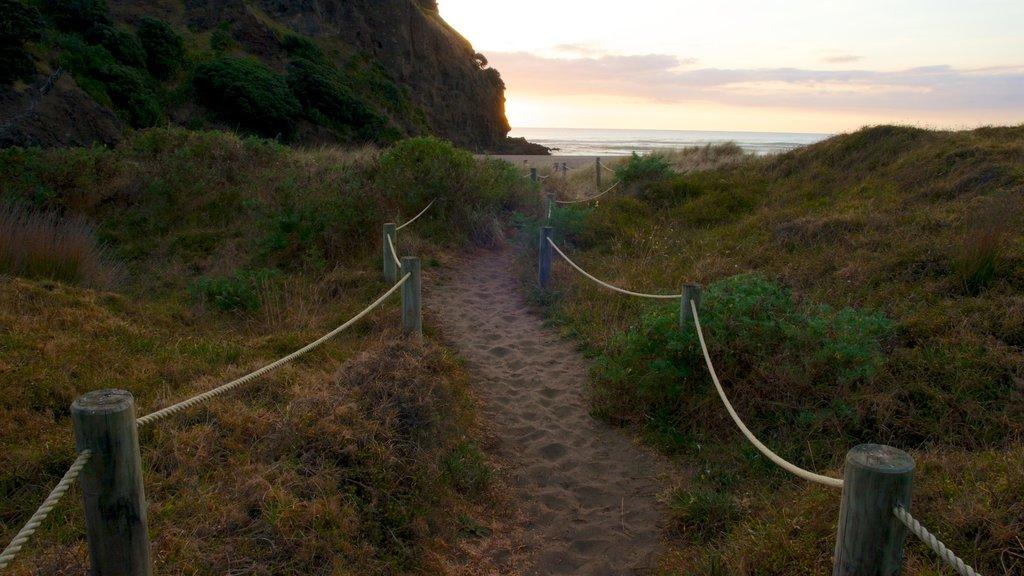 Piha Beach que incluye vistas de paisajes y una playa de arena