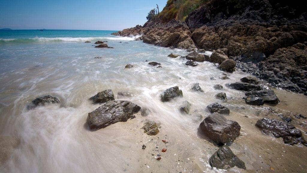 Palm Beach featuring a sandy beach, landscape views and rocky coastline
