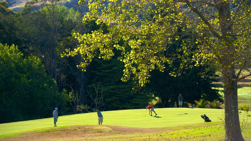 Auckland Domain showing golf, landscape views and a park
