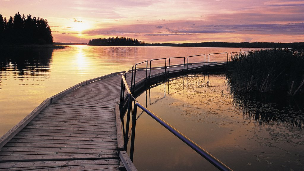 Edmonton showing a sunset and a bridge