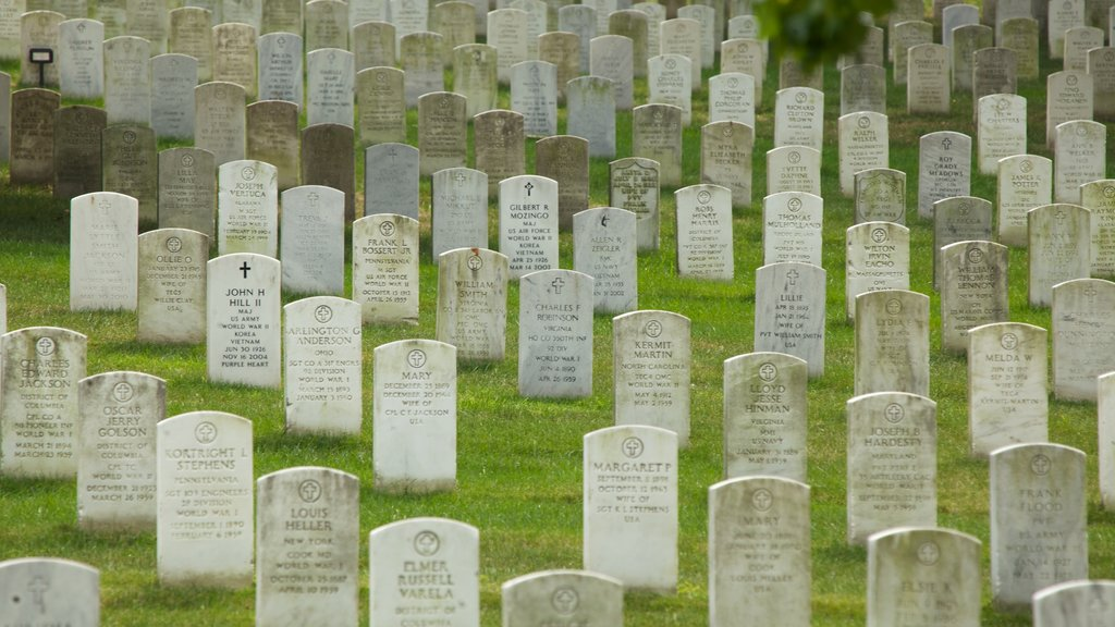 Arlington showing a cemetery