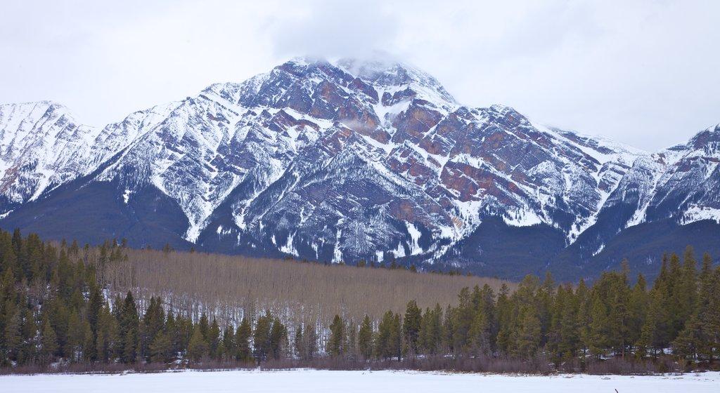 Jasper que incluye montañas y nieve