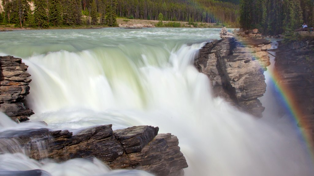 Athabasca Falls showing a waterfall and landscape views