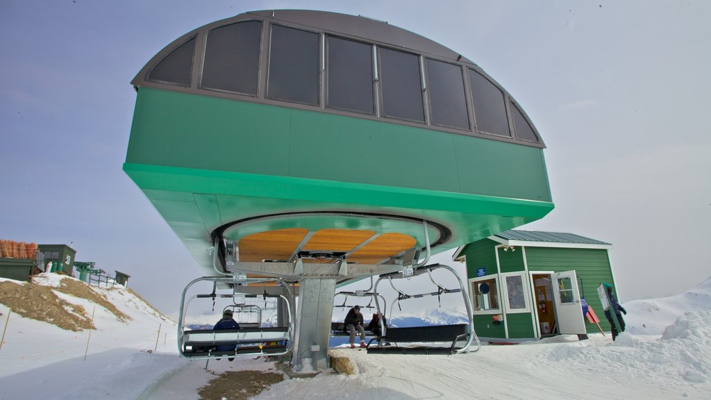 Marmot Basin which includes snow and a gondola