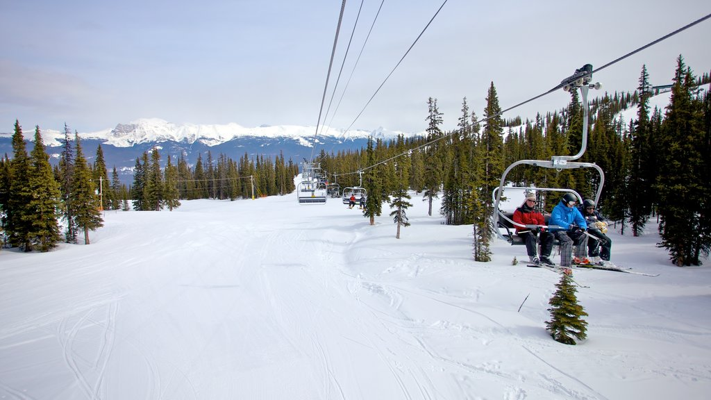 Marmot Basin showing snow, landscape views and snow skiing