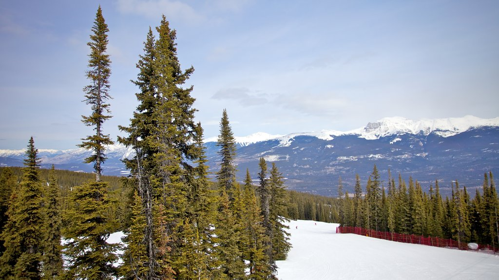 Marmot Basin showing landscape views, mountains and snow