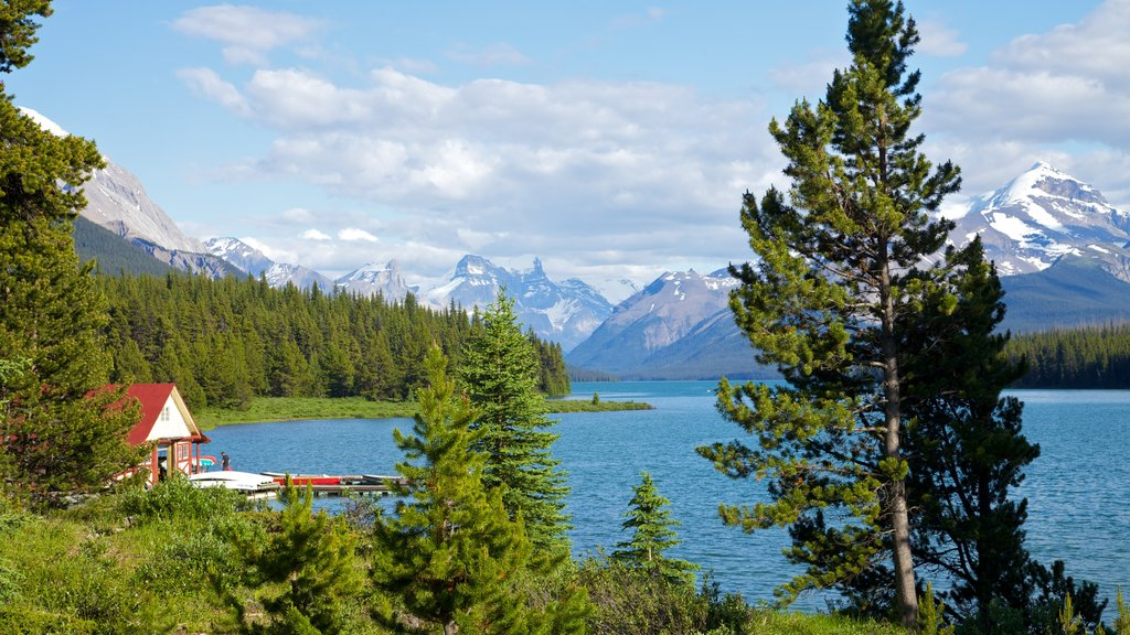 Maligne Lake which includes landscape views, a lake or waterhole and general coastal views