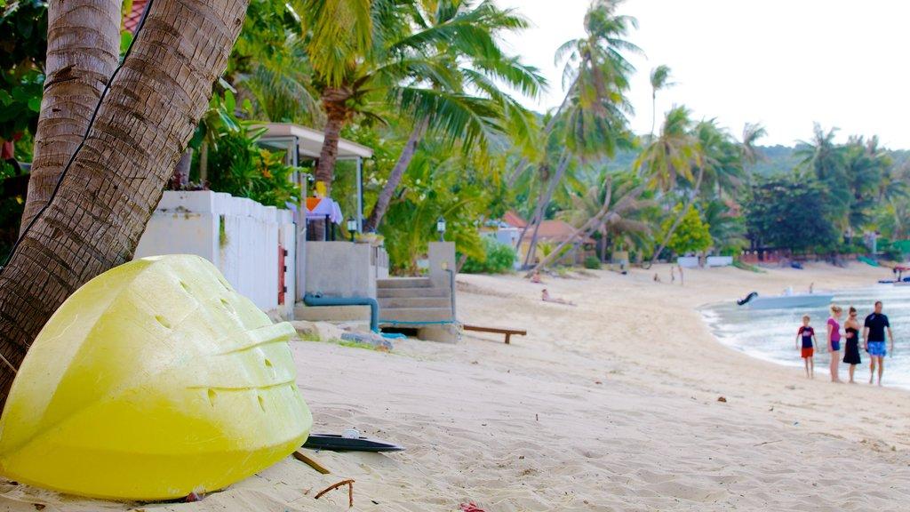 Bangrak Beach featuring a beach and tropical scenes