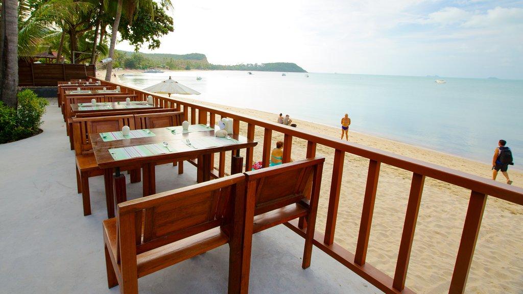Bangrak Beach featuring tropical scenes and a sandy beach