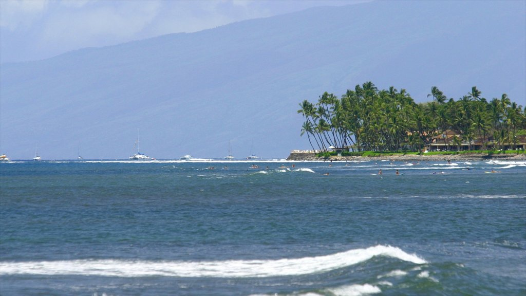 Lahaina featuring a coastal town, island images and tropical scenes