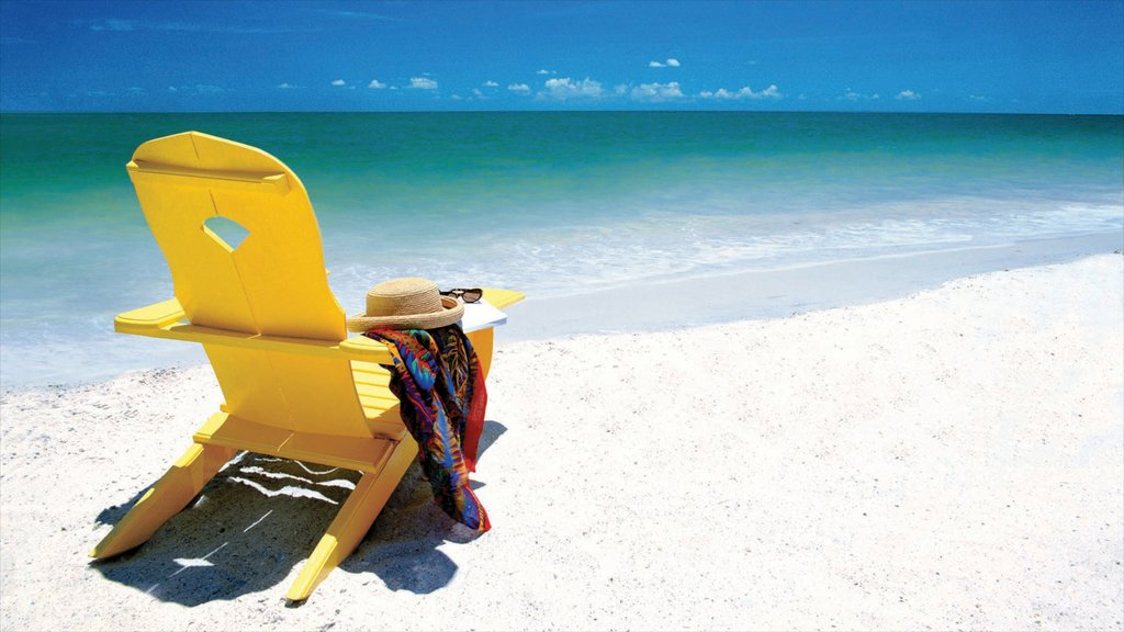 Clearwater Beach showing a luxury hotel or resort, a sandy beach and tropical scenes