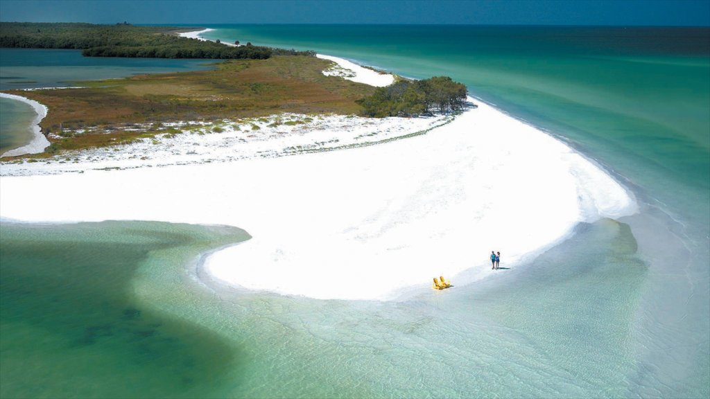 Clearwater Beach showing landscape views and a beach