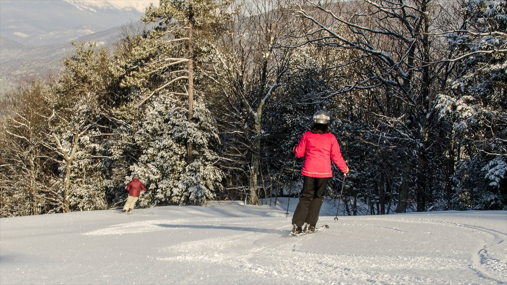 North Conway showing mountains, snow skiing and snow