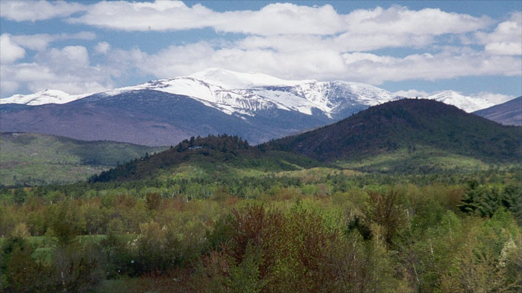 North Conway mostrando vistas de paisajes y montañas