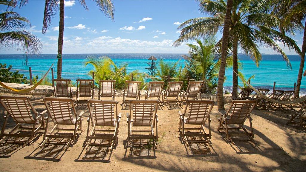Garrafon Natural Reef Park which includes tropical scenes and general coastal views