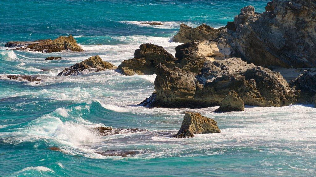 Isla Mujeres which includes general coastal views and rocky coastline