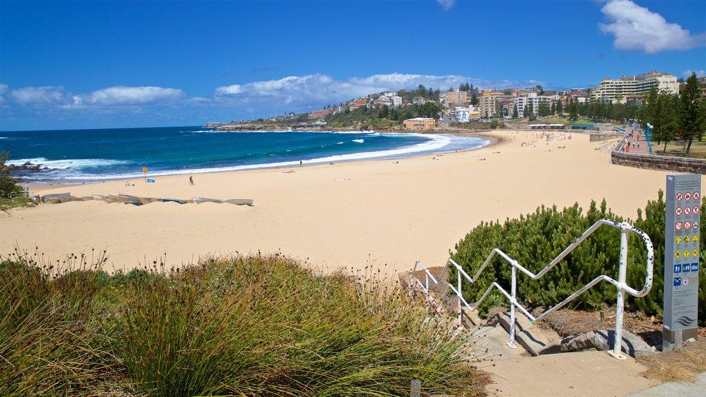 Coogee Beach showing a coastal town, a beach and general coastal views