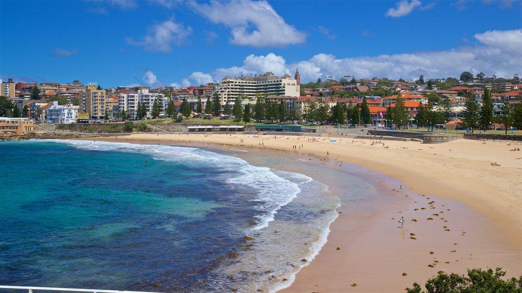 Coogee Beach featuring a sandy beach, general coastal views and a coastal town