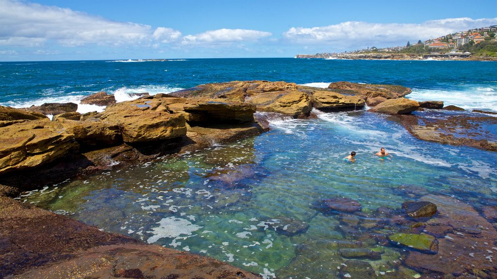 Coogee Beach showing rugged coastline, swimming and general coastal views