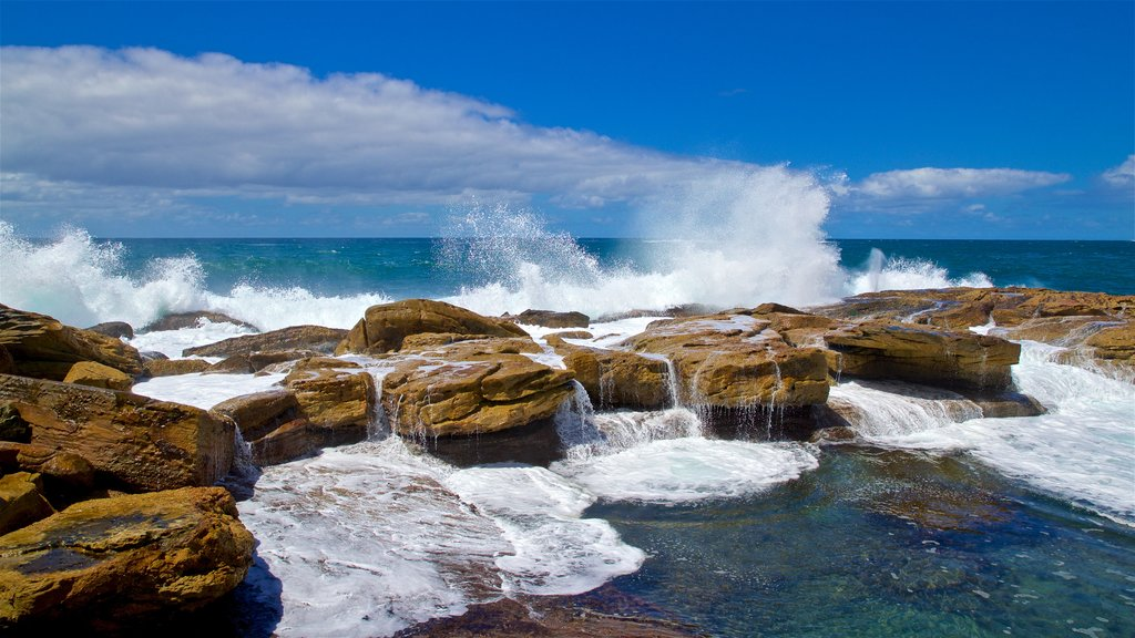 Coogee Beach which includes rugged coastline, general coastal views and waves