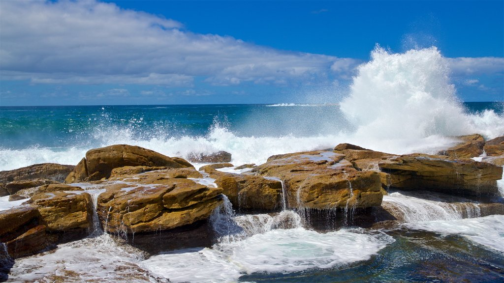 Coogee Beach featuring waves, general coastal views and rugged coastline
