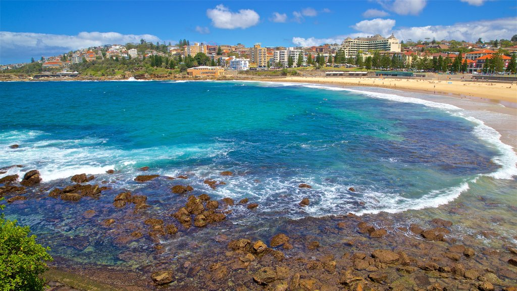 Coogee Beach showing a coastal town, rugged coastline and general coastal views