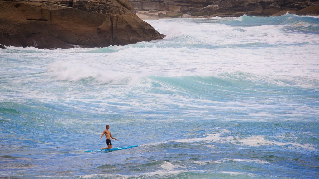 Bronte Beach featuring surfing, general coastal views and waves