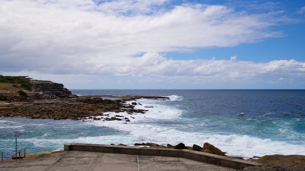 Clovelly Beach showing general coastal views and rocky coastline