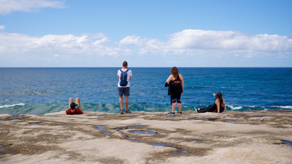 Clovelly Beach which includes general coastal views and rugged coastline as well as a small group of people