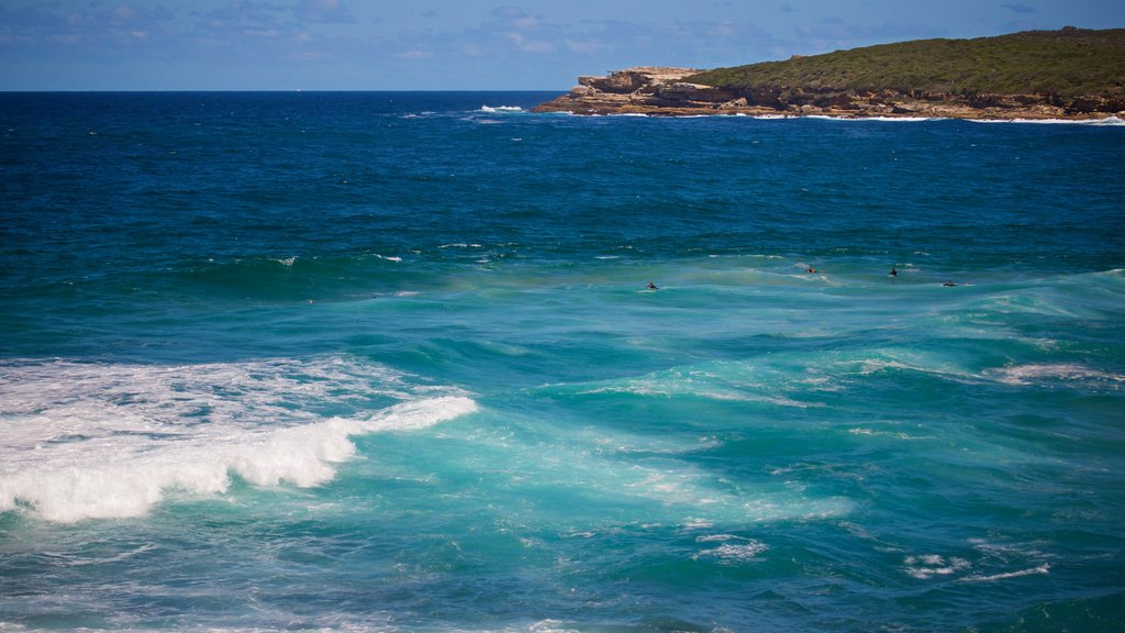 Maroubra Beach showing general coastal views and surfing