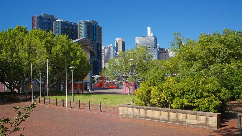 Sydney showing a garden