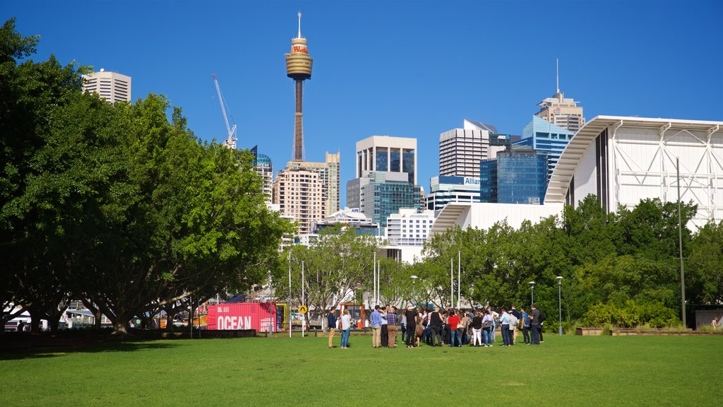Sydney which includes a park as well as a small group of people
