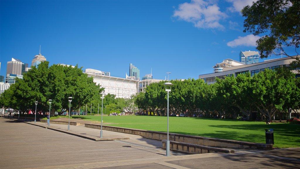 Sydney featuring a garden