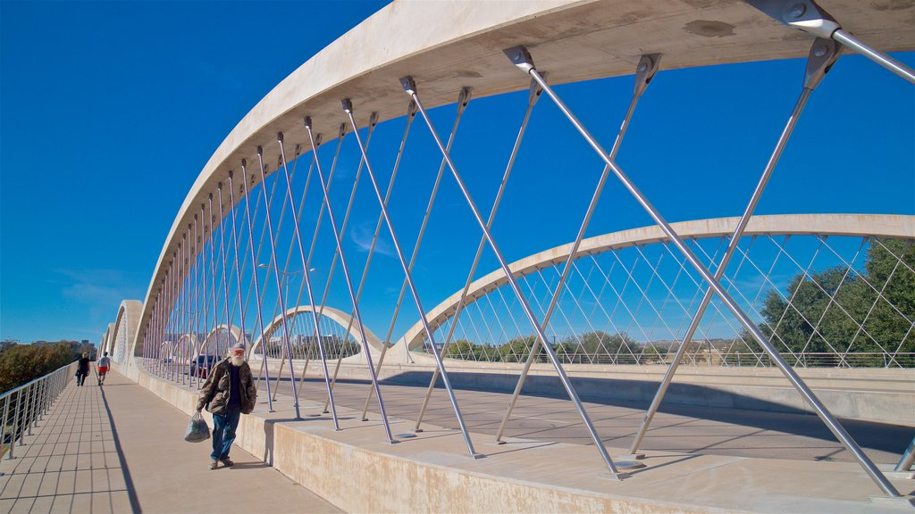 Fort Worth featuring a bridge as well as an individual male