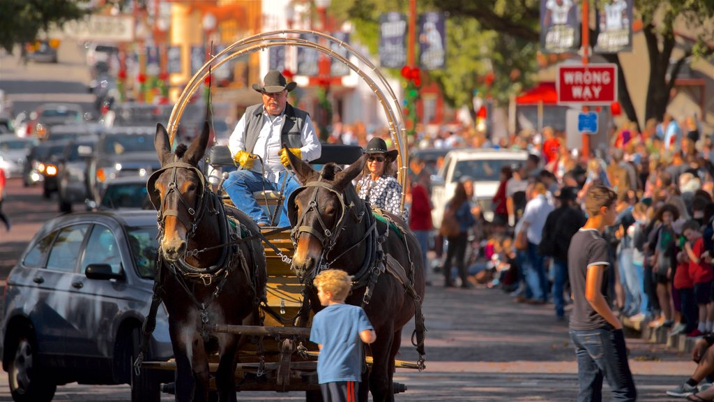 Fort Worth Stockyards featuring horseriding, a festival and land animals
